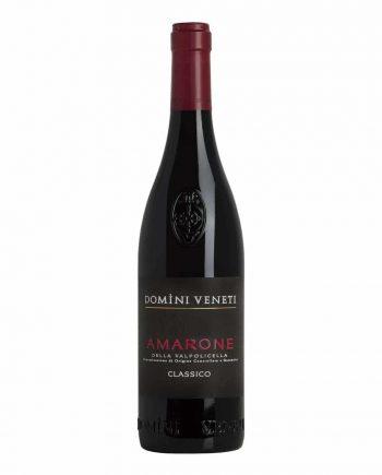 Amarone della Valpolicella - Domini Veneti