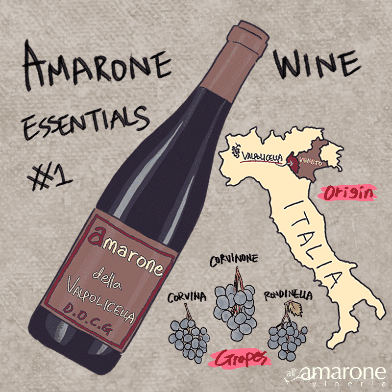Amarone Wine Essential #1