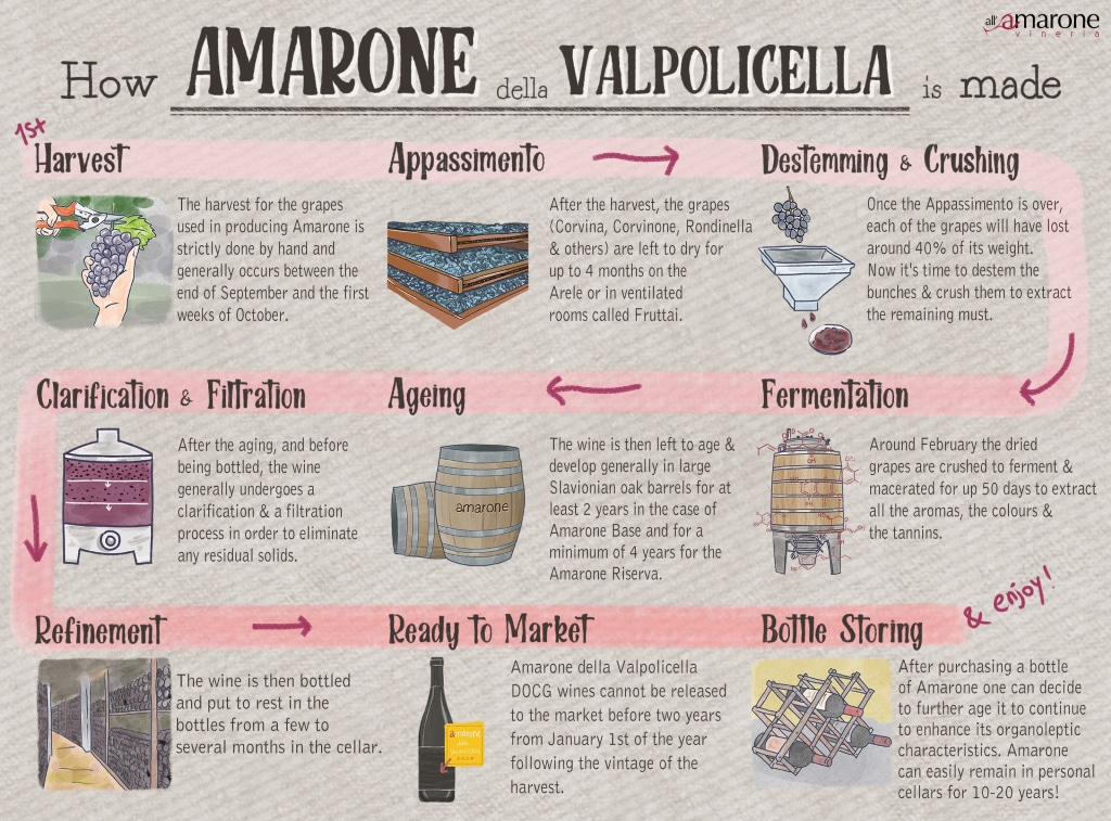 how amarone wine is made - infographic